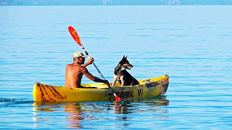 Dog Beach watersports