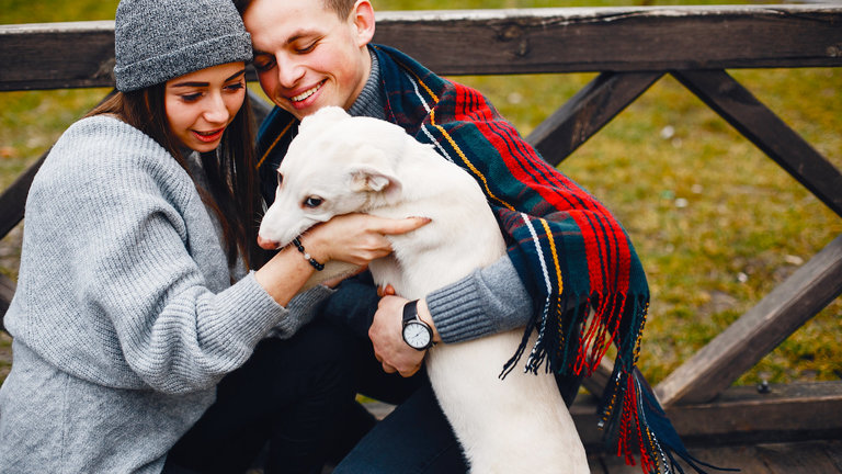 Puppy love brings many benefits to dog owners