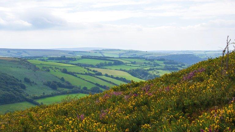 Doone Valley, Exmoor, England